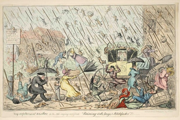 Nineteenth century engraving depicting raining cats and dogs