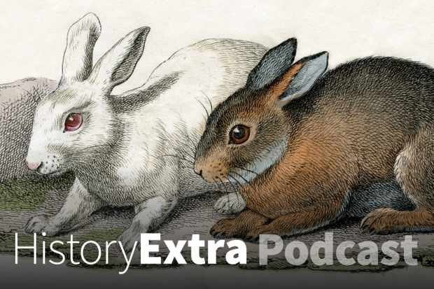 The 18th-century rabbit breeding hoax (Photo by Getty Images)