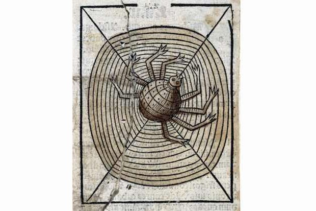 A spider on its web, woodcut, 1547. (Image courtesy of Wellcome Collection)