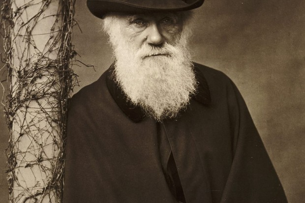 Charles Darwin at his home at Down House, Kent, c1880. (Photo by English Heritage/Heritage Images/Getty Images)