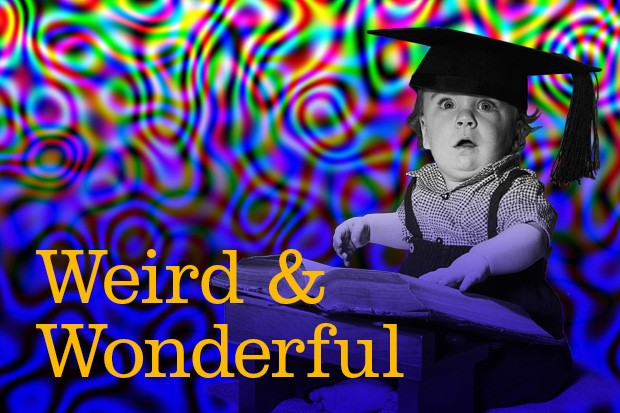 Weird and Wonderful banners2
