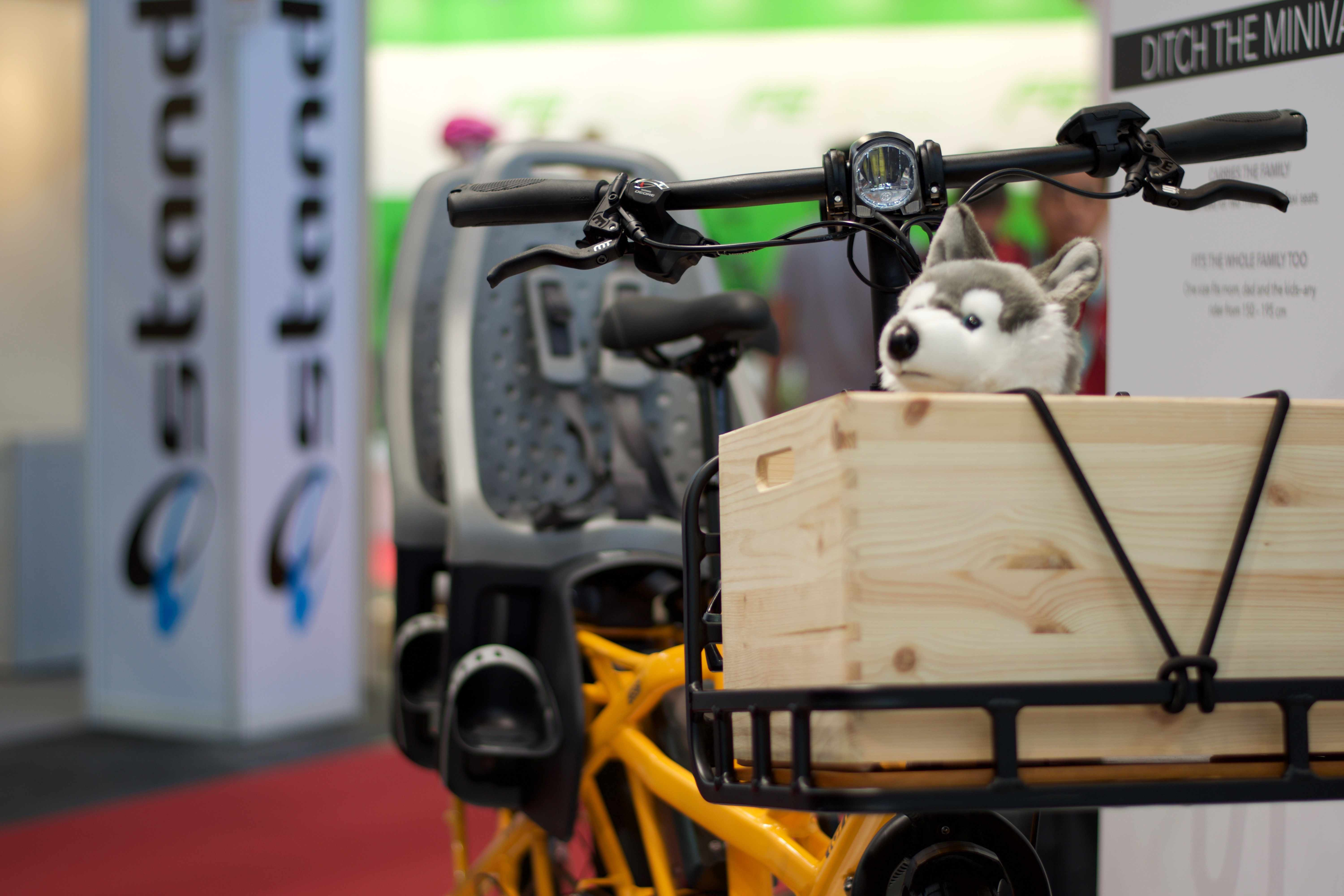 A cuddly wolf in a crate on a Tern GSD bike
