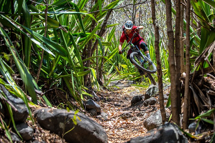Riding through tropical landscape on Reunion Island