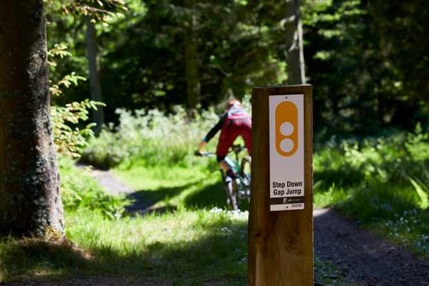 The freeride park at Glentress is perfect for honing your skills. Credit: Steve Behr