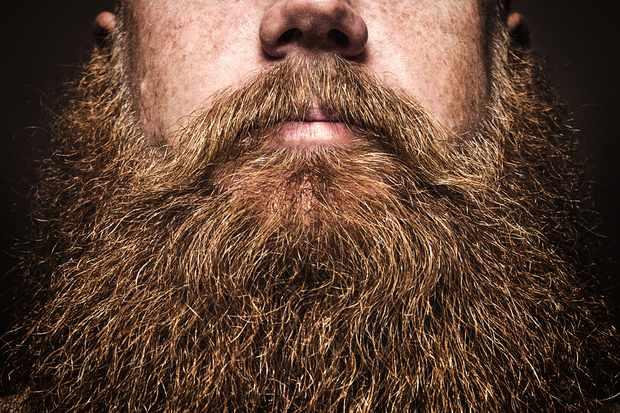 close up of big bushy beard