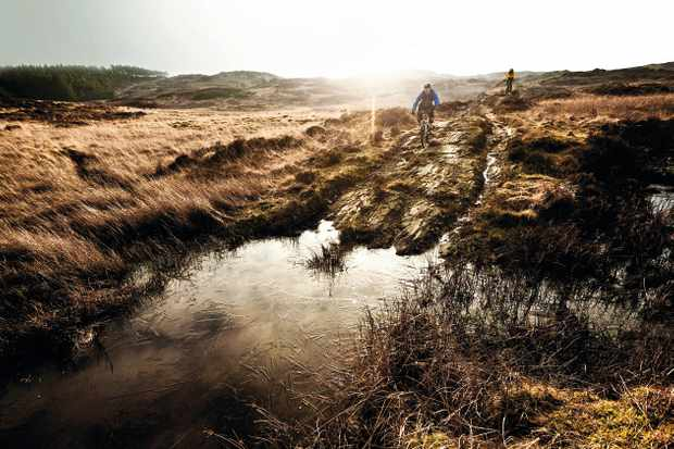 Mountain bike riders on a bike route in Grizedale, Lake District, January 17, 2012. (Photo by Russell Burton/Mountain Biking UK magazine)