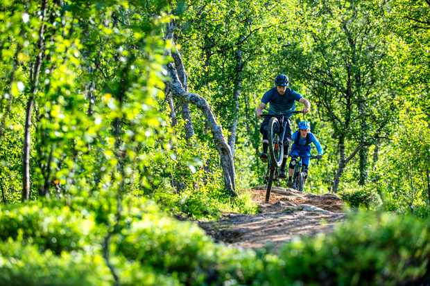 Two mountain bikers following each other in a lush green woodland