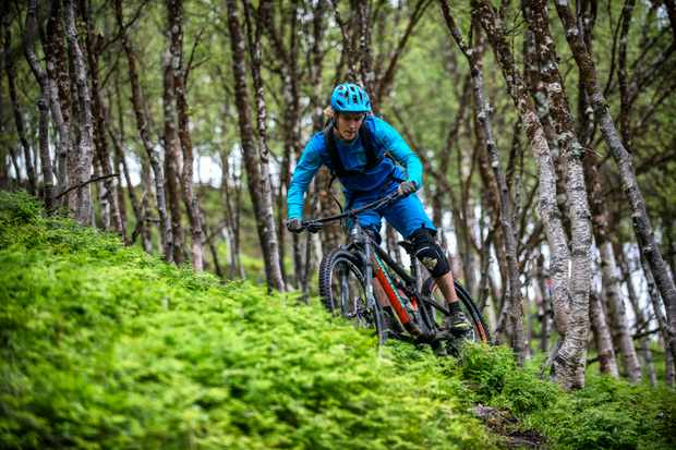 Thomas Klingenberg drifts a corner on his mountain bike in a forest of birch trees and ferns