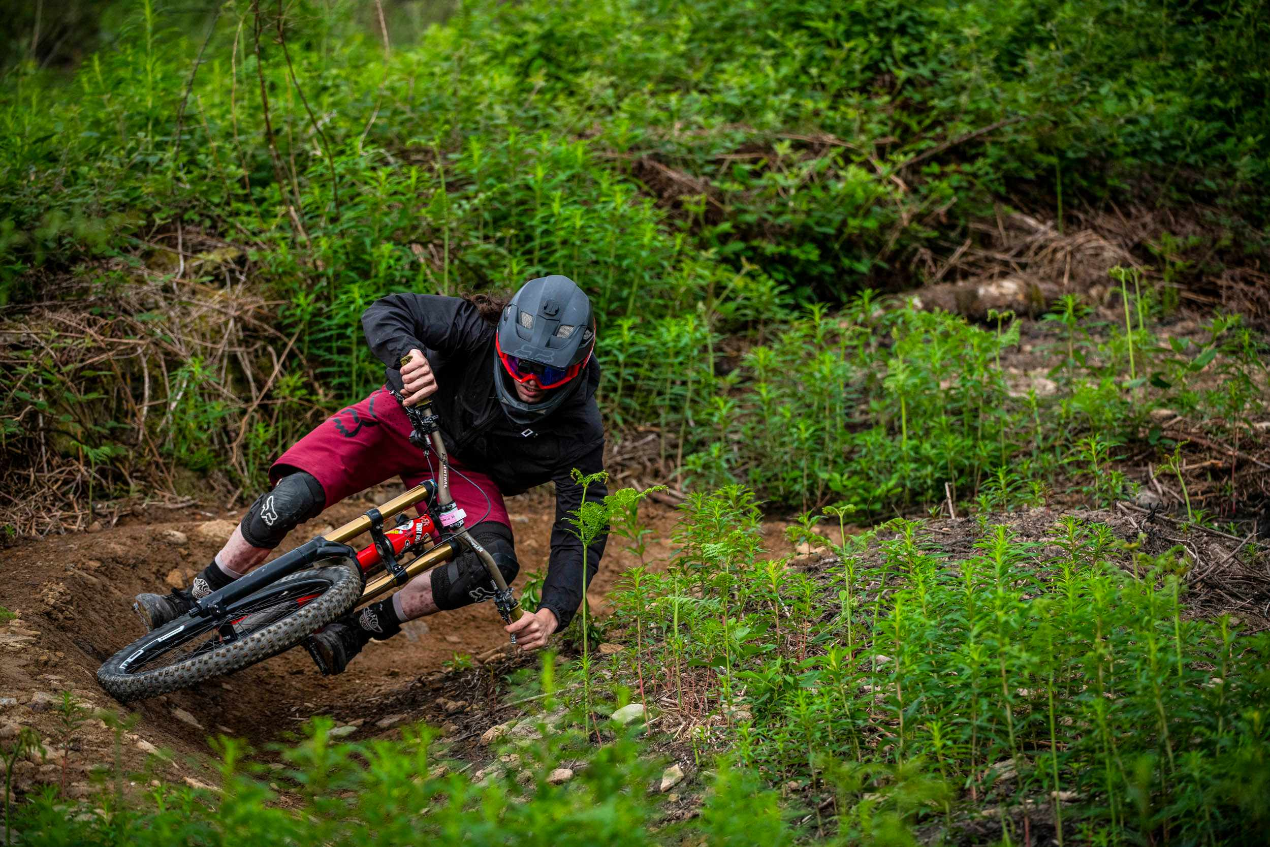 New trails at BikePark Wales. Pic: www.andylloyd.photography