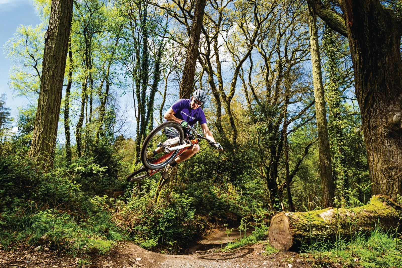 Mountain biker in Haldon