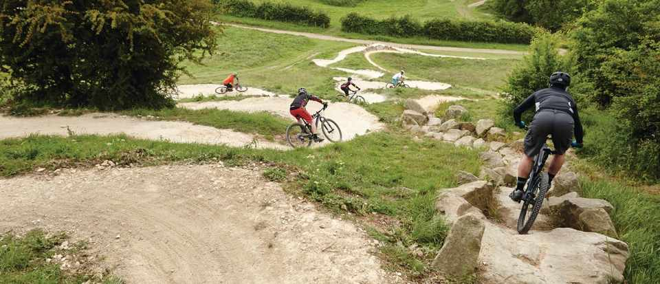 Hadleigh Park - Mountain Biking UK