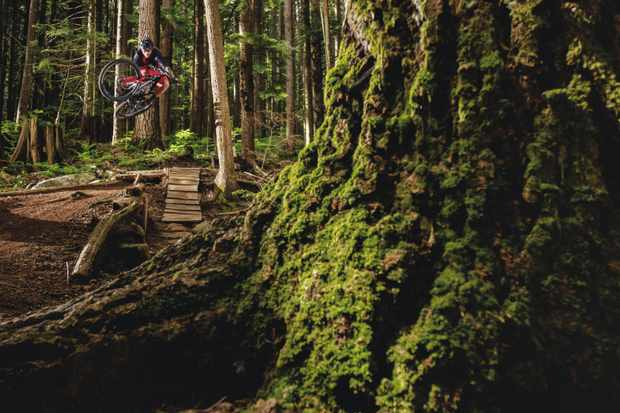 Vancouver's famous North Shore trails