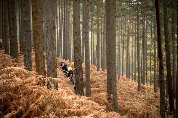 Mountain biking in the Surrey Hills. Pic: Russell Burton